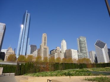 chicago, city, buildings